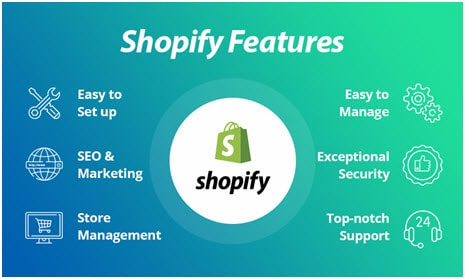 shopify Screenshot for reference